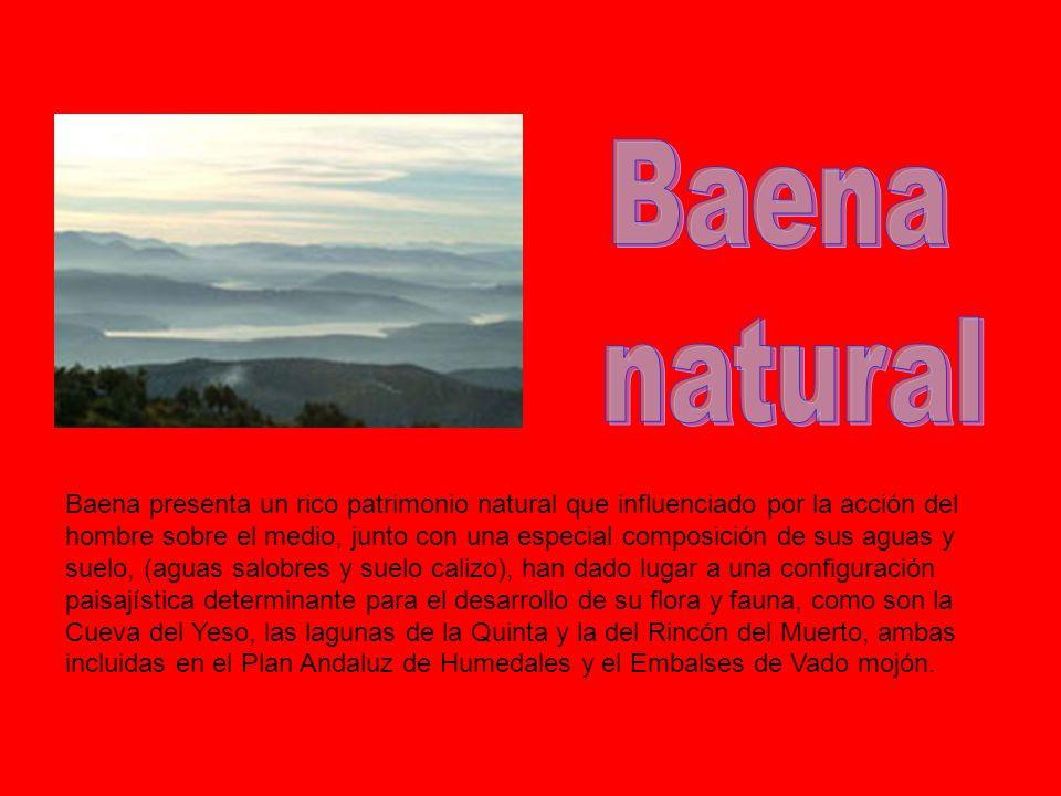 Baena presenta un rico patrimonio natural que influenciado por la acción del hombre sobre el medio, junto con una especial composición de sus aguas y