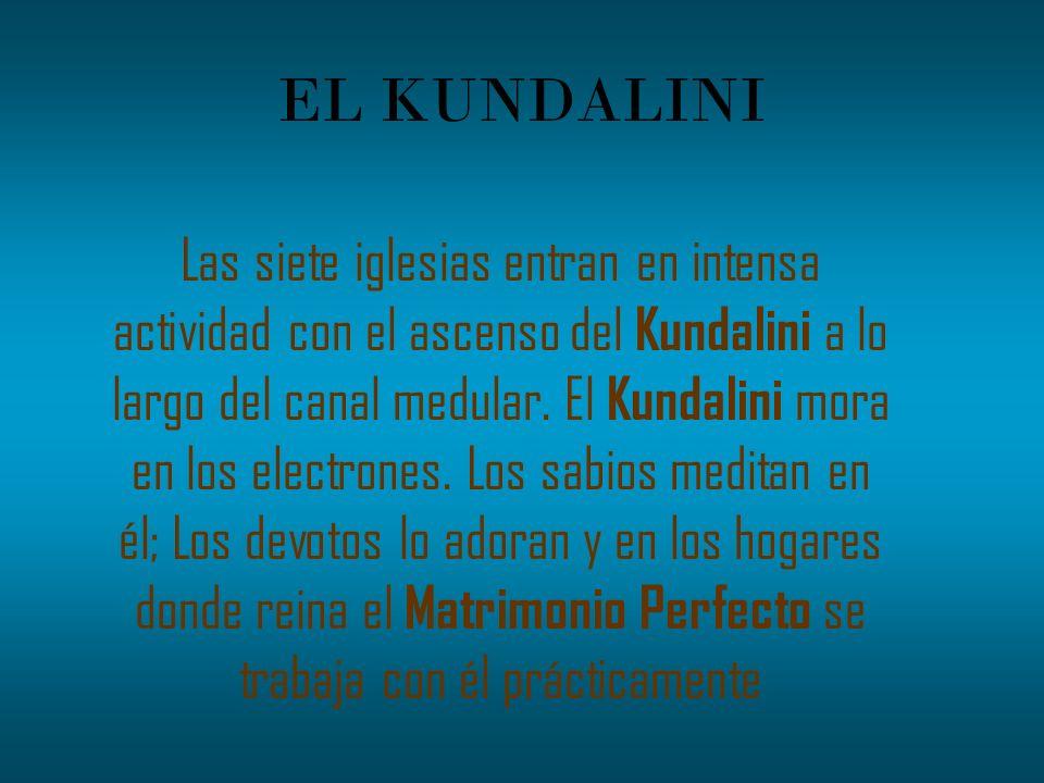 EL KUNDALINI Las siete iglesias entran en intensa actividad con el ascenso del Kundalini a lo largo del canal medular. El Kundalini mora en los electr