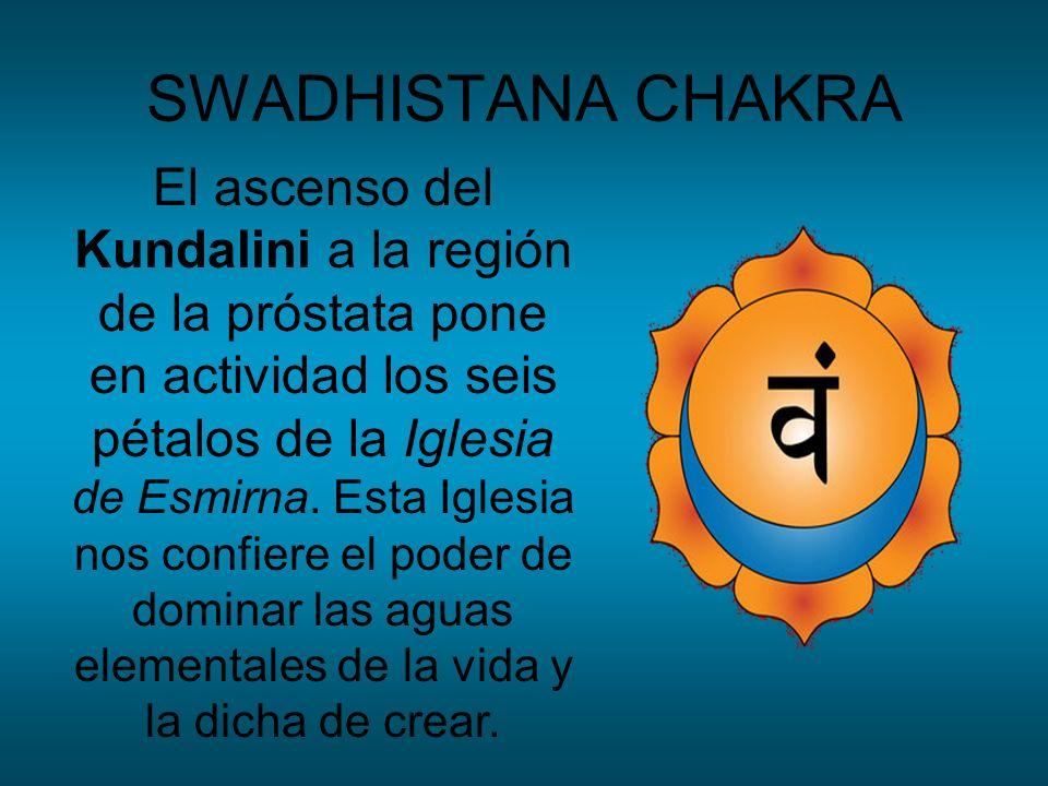 SWADHISTANA CHAKRA El ascenso del Kundalini a la región de la próstata pone en actividad los seis pétalos de la Iglesia de Esmirna. Esta Iglesia nos c