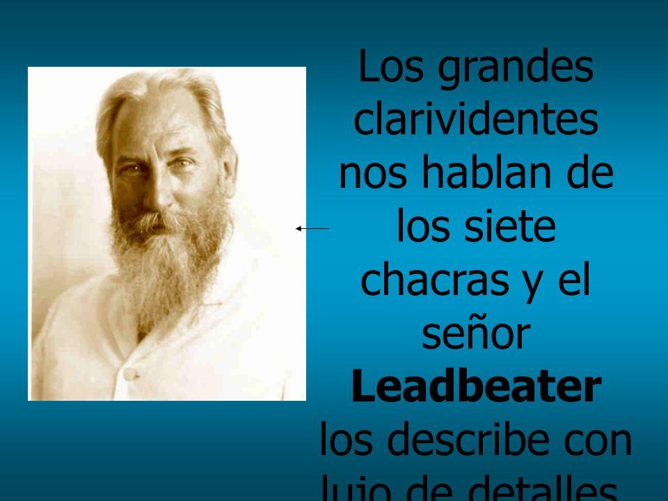 Los grandes clarividentes nos hablan de los siete chacras y el señor Leadbeater los describe con lujo de detalles. Estos chacras son realmente los sen