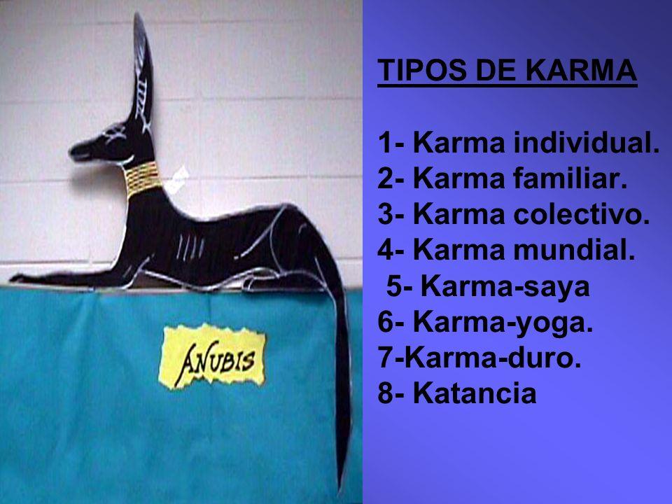 TIPOS DE KARMA 1- Karma individual.2- Karma familiar.