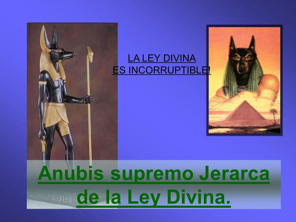 Anubis supremo Jerarca de la Ley Divina. LA LEY DIVINA ES INCORRUPTIBLE!