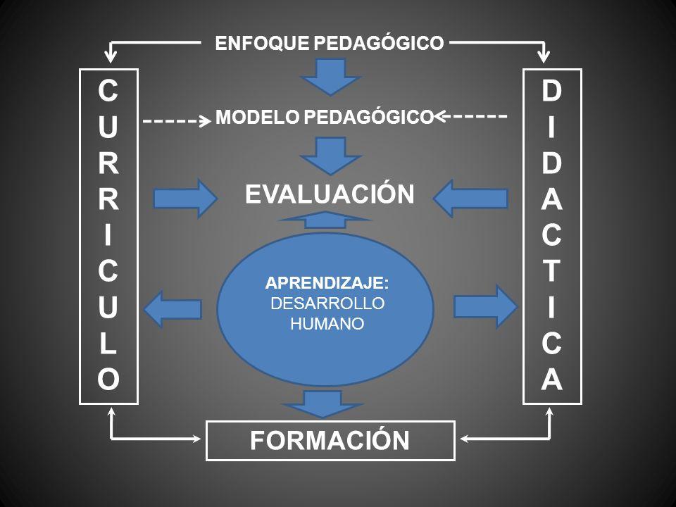 CURRICULOCURRICULO DIDACTICADIDACTICA ENFOQUE PEDAGÓGICO MODELO PEDAGÓGICO EVALUACIÓN APRENDIZAJE: DESARROLLO HUMANO FORMACIÓN