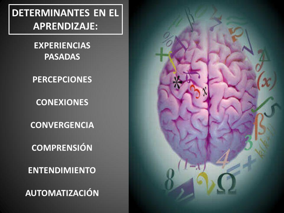EXPERIENCIAS PASADAS PERCEPCIONES CONEXIONES CONVERGENCIA COMPRENSIÓN ENTENDIMIENTO AUTOMATIZACIÓN DETERMINANTES EN EL APRENDIZAJE: