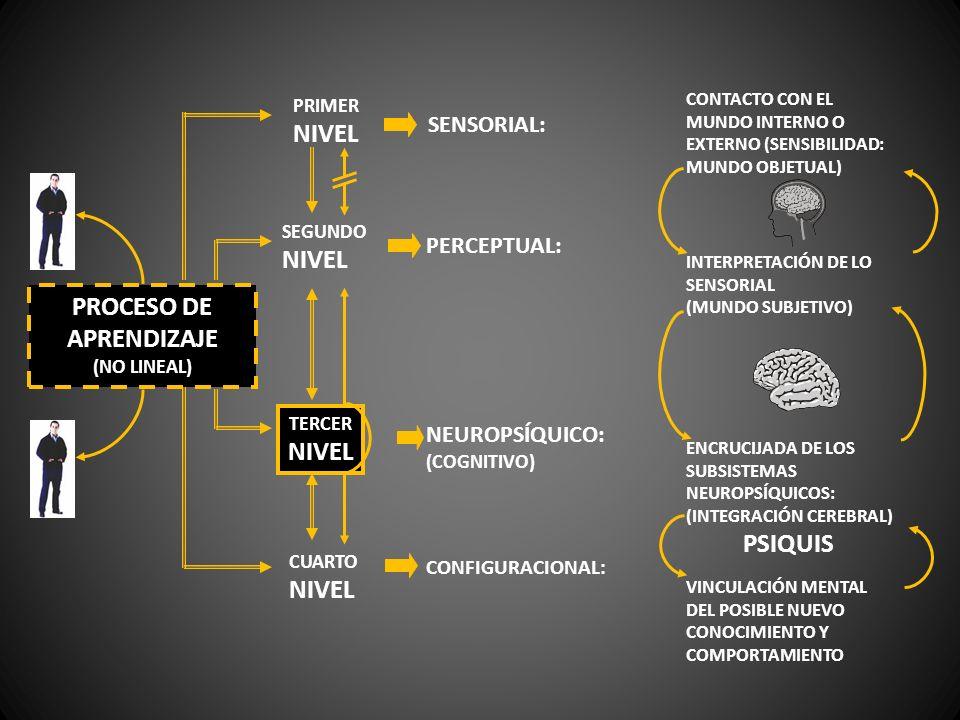 PROCESO DE APRENDIZAJE (NO LINEAL) PRIMER NIVEL SEGUNDO NIVEL CUARTO NIVEL SENSORIAL: PERCEPTUAL: NEUROPSÍQUICO: (COGNITIVO) CONFIGURACIONAL: CONTACTO