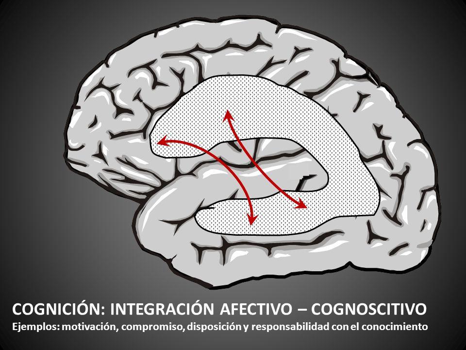 COGNICIÓN: INTEGRACIÓN AFECTIVO – COGNOSCITIVO Ejemplos: motivación, compromiso, disposición y responsabilidad con el conocimiento