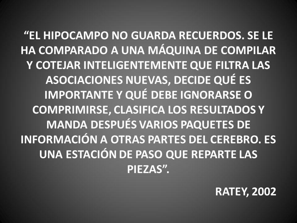 EL HIPOCAMPO NO GUARDA RECUERDOS. SE LE HA COMPARADO A UNA MÁQUINA DE COMPILAR Y COTEJAR INTELIGENTEMENTE QUE FILTRA LAS ASOCIACIONES NUEVAS, DECIDE Q
