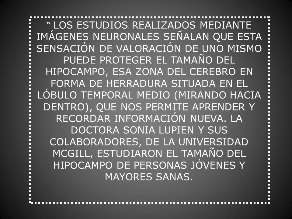 LOS ESTUDIOS REALIZADOS MEDIANTE IMÁGENES NEURONALES SEÑALAN QUE ESTA SENSACIÓN DE VALORACIÓN DE UNO MISMO PUEDE PROTEGER EL TAMAÑO DEL HIPOCAMPO, ESA