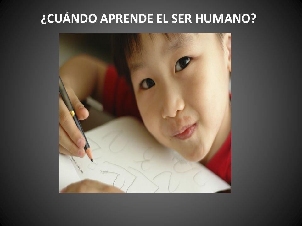 ¿CUÁNDO APRENDE EL SER HUMANO?