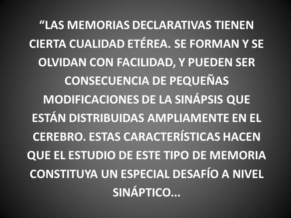 LAS MEMORIAS DECLARATIVAS TIENEN CIERTA CUALIDAD ETÉREA. SE FORMAN Y SE OLVIDAN CON FACILIDAD, Y PUEDEN SER CONSECUENCIA DE PEQUEÑAS MODIFICACIONES DE