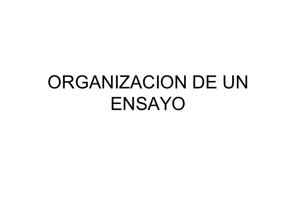 ORGANIZACION DE UN ENSAYO