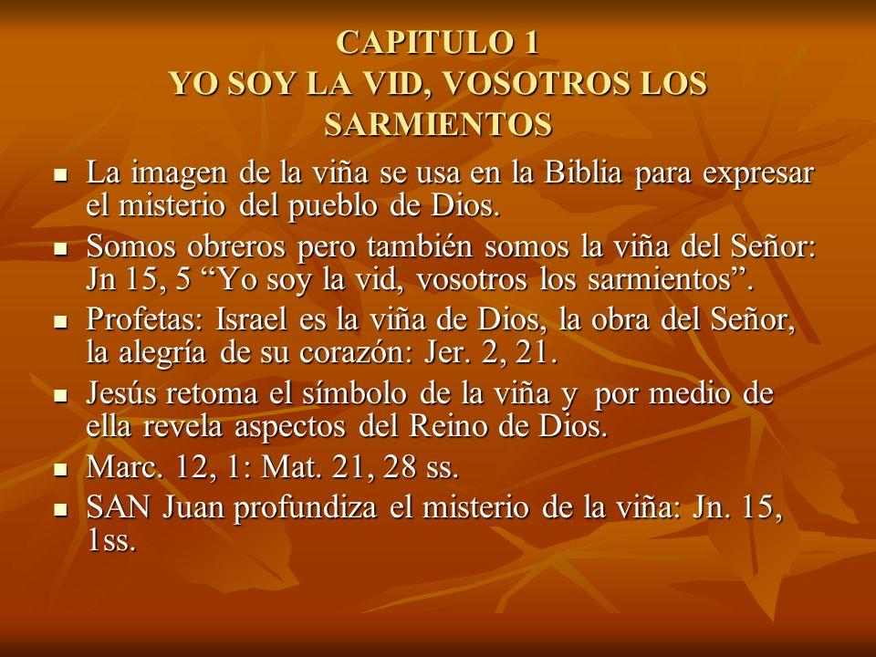CAPITULO 1 YO SOY LA VID, VOSOTROS LOS SARMIENTOS La imagen de la viña se usa en la Biblia para expresar el misterio del pueblo de Dios. La imagen de