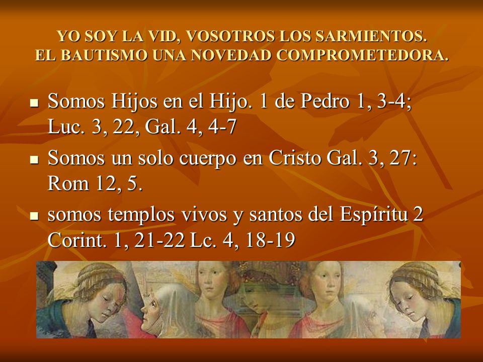 YO SOY LA VID, VOSOTROS LOS SARMIENTOS. EL BAUTISMO UNA NOVEDAD COMPROMETEDORA. Somos Hijos en el Hijo. 1 de Pedro 1, 3-4; Luc. 3, 22, Gal. 4, 4-7 Som