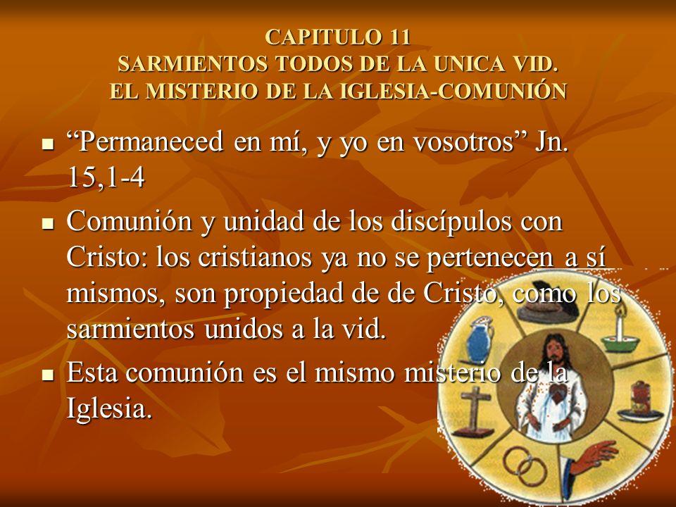 CAPITULO 11 SARMIENTOS TODOS DE LA UNICA VID. EL MISTERIO DE LA IGLESIA-COMUNIÓN Permaneced en mí, y yo en vosotros Jn. 15,1-4 Permaneced en mí, y yo
