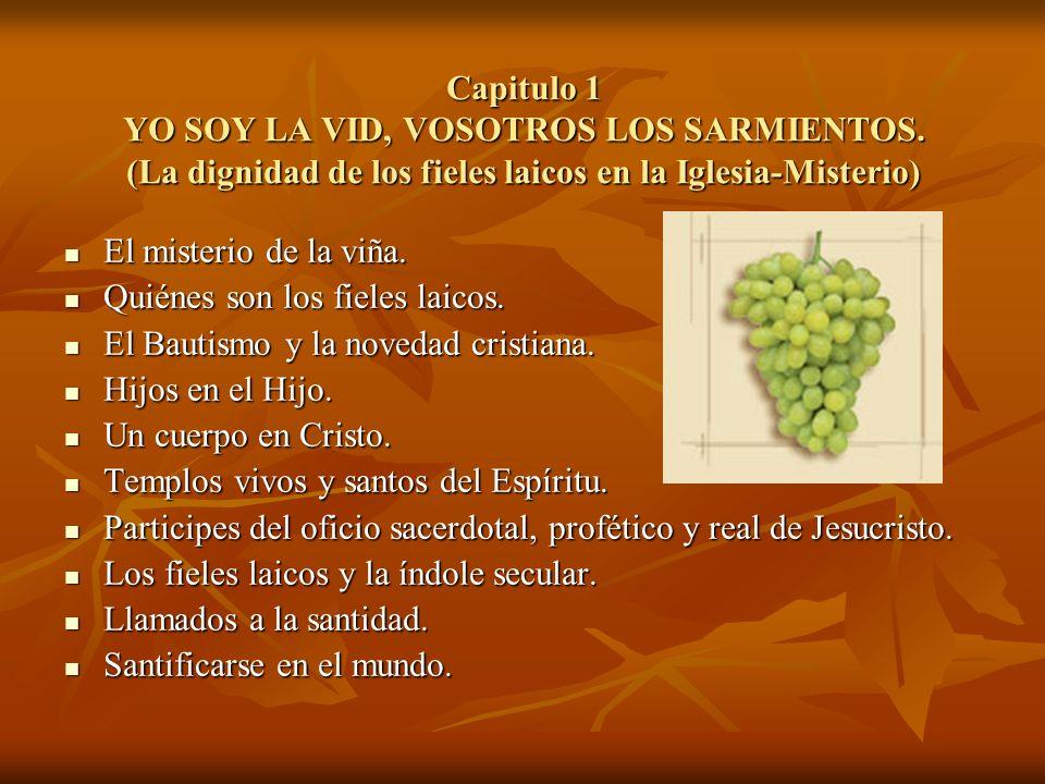 Capitulo 1 YO SOY LA VID, VOSOTROS LOS SARMIENTOS. (La dignidad de los fieles laicos en la Iglesia-Misterio) El misterio de la viña. Quiénes son los f