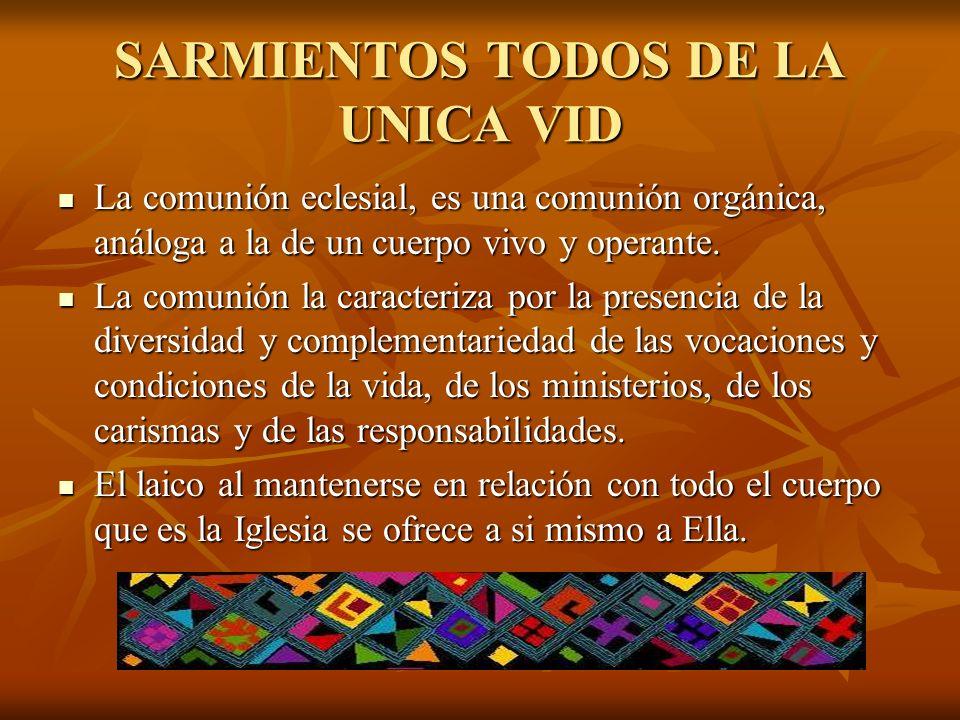 SARMIENTOS TODOS DE LA UNICA VID La comunión eclesial, es una comunión orgánica, análoga a la de un cuerpo vivo y operante. La comunión eclesial, es u