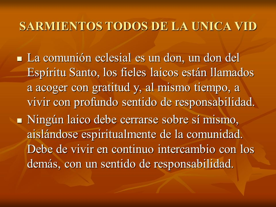 SARMIENTOS TODOS DE LA UNICA VID La comunión eclesial es un don, un don del Espíritu Santo, los fieles laicos están llamados a acoger con gratitud y,