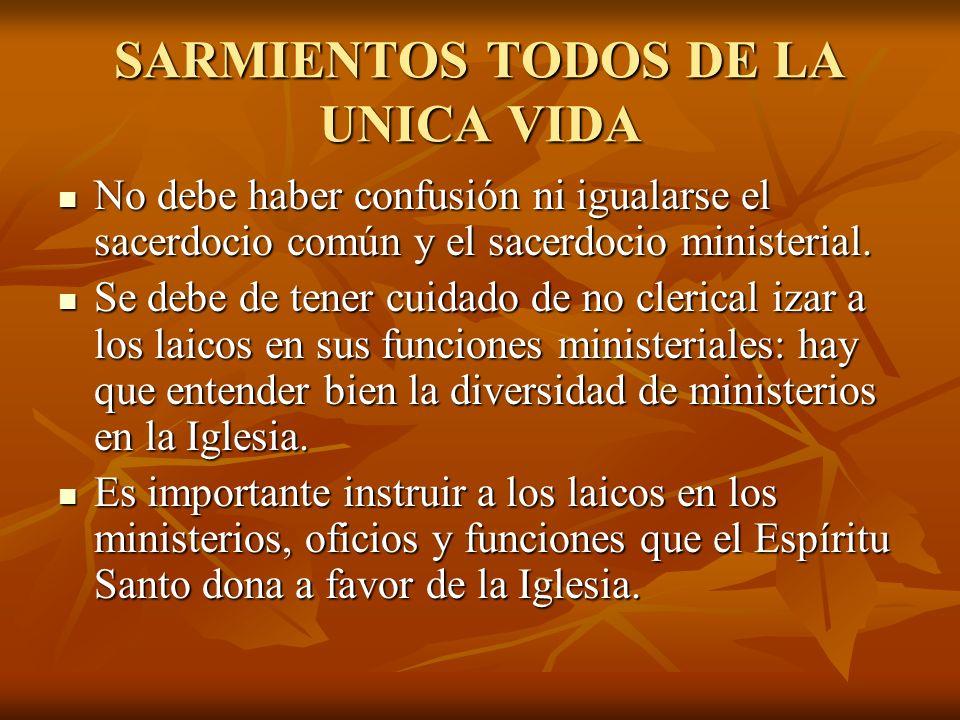 SARMIENTOS TODOS DE LA UNICA VIDA No debe haber confusión ni igualarse el sacerdocio común y el sacerdocio ministerial. No debe haber confusión ni igu