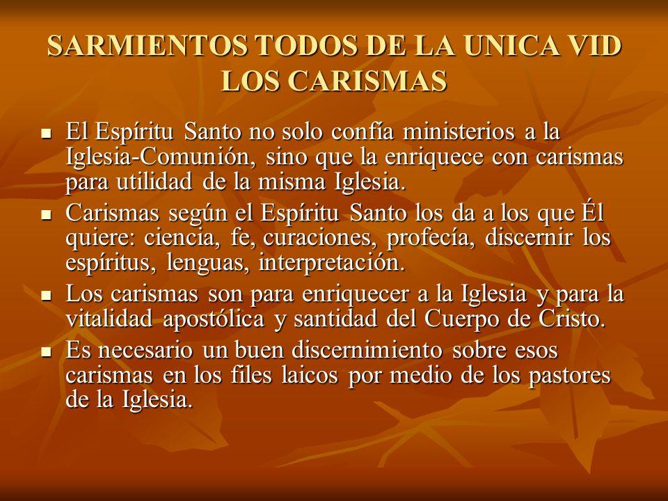 SARMIENTOS TODOS DE LA UNICA VID LOS CARISMAS El Espíritu Santo no solo confía ministerios a la Iglesia-Comunión, sino que la enriquece con carismas p