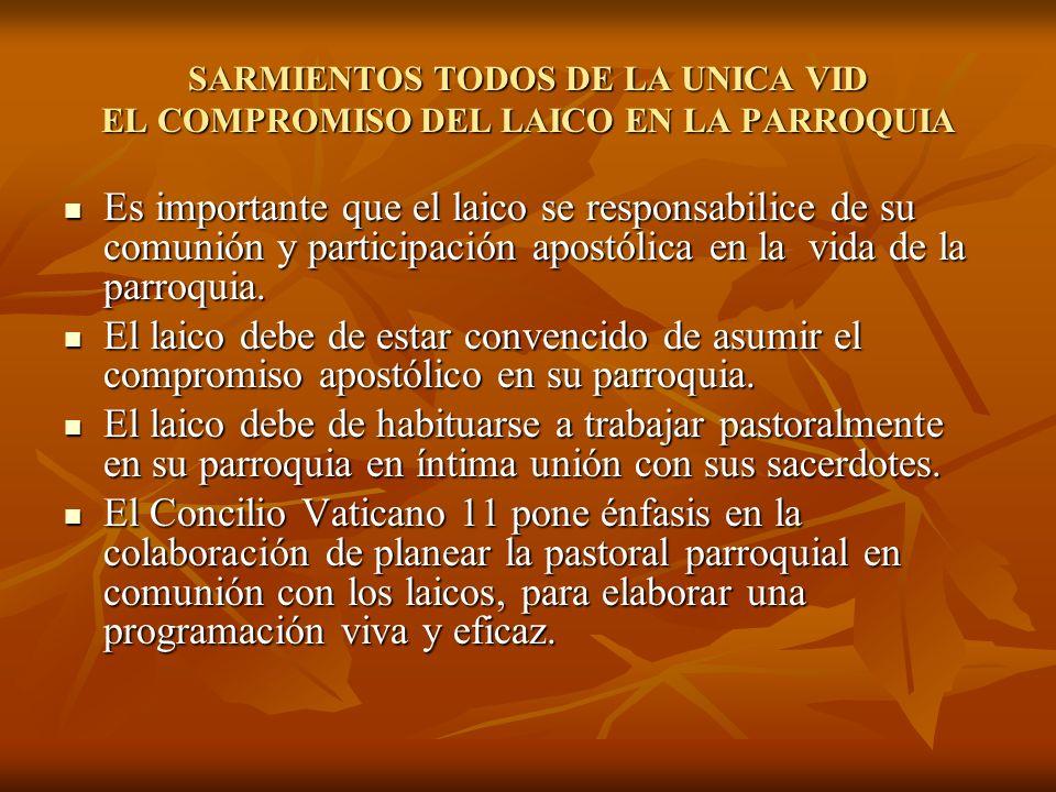 SARMIENTOS TODOS DE LA UNICA VID EL COMPROMISO DEL LAICO EN LA PARROQUIA Es importante que el laico se responsabilice de su comunión y participación a