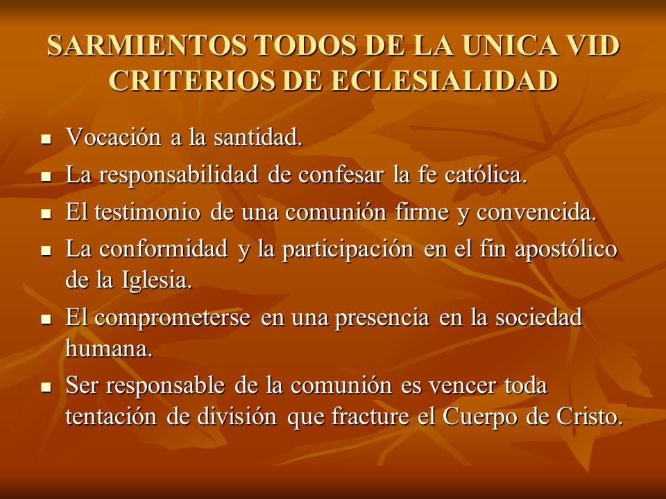 SARMIENTOS TODOS DE LA UNICA VID CRITERIOS DE ECLESIALIDAD Vocación a la santidad. La responsabilidad de confesar la fe católica. El testimonio de una