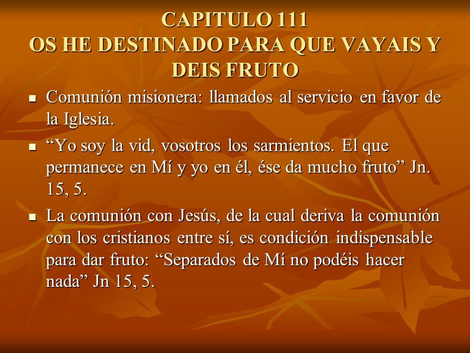CAPITULO 111 OS HE DESTINADO PARA QUE VAYAIS Y DEIS FRUTO Comunión misionera: llamados al servicio en favor de la Iglesia. Comunión misionera: llamado