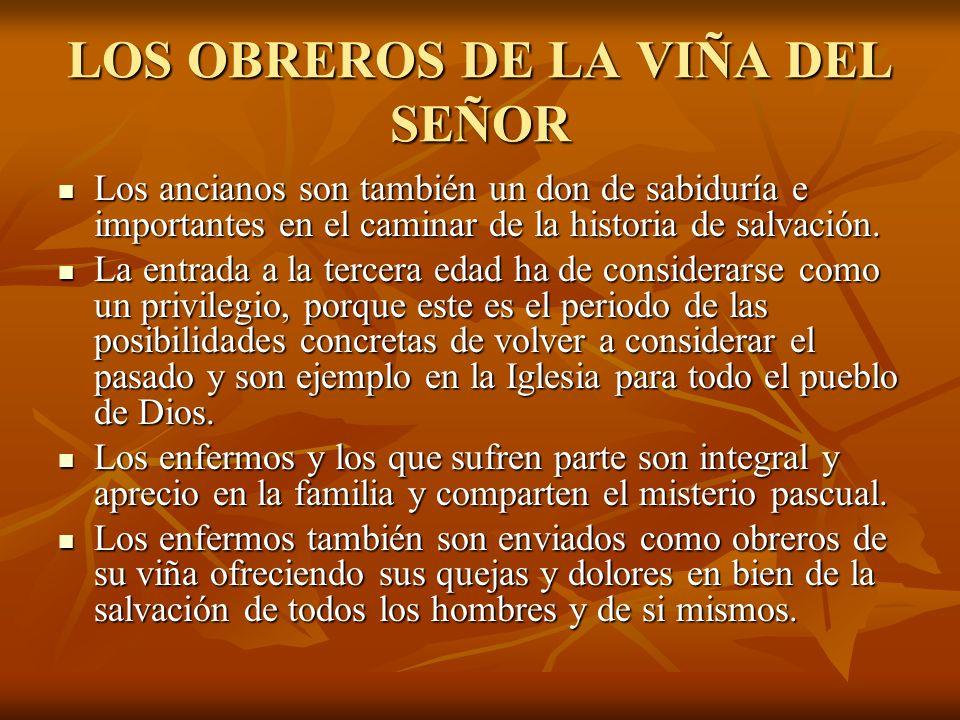 LOS OBREROS DE LA VIÑA DEL SEÑOR Los ancianos son también un don de sabiduría e importantes en el caminar de la historia de salvación. Los ancianos so