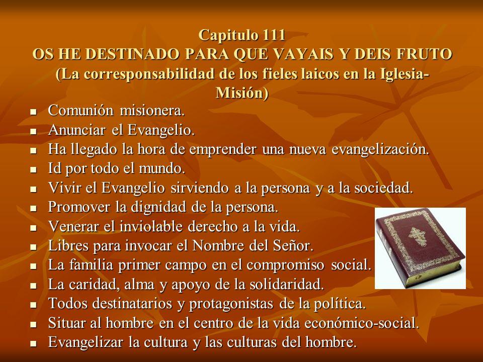 Capitulo 111 OS HE DESTINADO PARA QUE VAYAIS Y DEIS FRUTO (La corresponsabilidad de los fieles laicos en la Iglesia- Misión) Comunión misionera. Comun