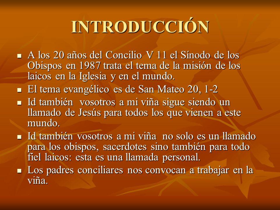 INTRODUCCIÓN A los 20 años del Concilio V 11 el Sínodo de los Obispos en 1987 trata el tema de la misión de los laicos en la Iglesia y en el mundo. A