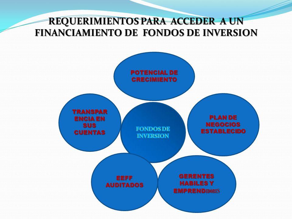 REQUERIMIENTOS PARA ACCEDER A UN FINANCIAMIENTO DE FONDOS DE INVERSION TRANSPAR ENCIA EN SUS CUENTAS EEFFAUDITADOS GERENTES HABILES Y EMPREND EDORE S
