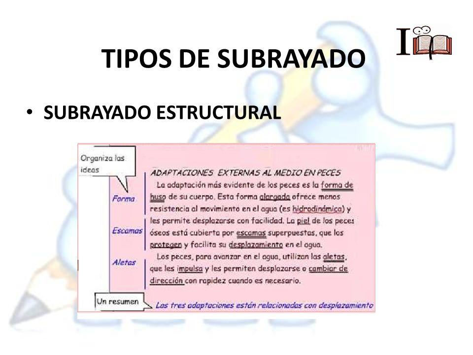 TIPOS DE SUBRAYADO SUBRAYADO ESTRUCTURAL
