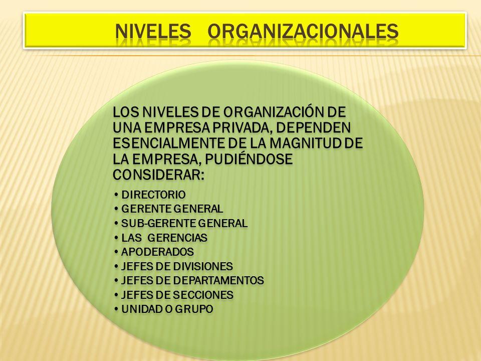 LOS NIVELES DE ORGANIZACIÓN DE UNA EMPRESA PRIVADA, DEPENDEN ESENCIALMENTE DE LA MAGNITUD DE LA EMPRESA, PUDIÉNDOSE CONSIDERAR: DIRECTORIO GERENTE GEN