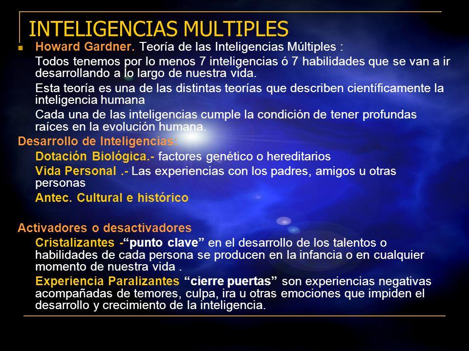 12 Existencia de muchas y múltiples habilidades y capacidades para reconocer, crear y solucionar problemas Varia la intensidad y las formas en que se