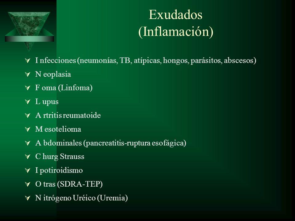 Exudados (Inflamación) I nfecciones (neumonías, TB, atípicas, hongos, parásitos, abscesos) N eoplasia F oma (Linfoma) L upus A rtritis reumatoide M es