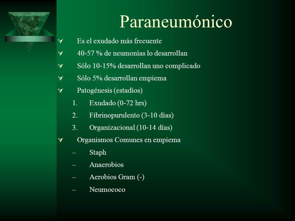 Paraneumónico Es el exudado más frecuente 40-57 % de neumonías lo desarrollan Sólo 10-15% desarrollan uno complicado Sólo 5% desarrollan empiema Patog