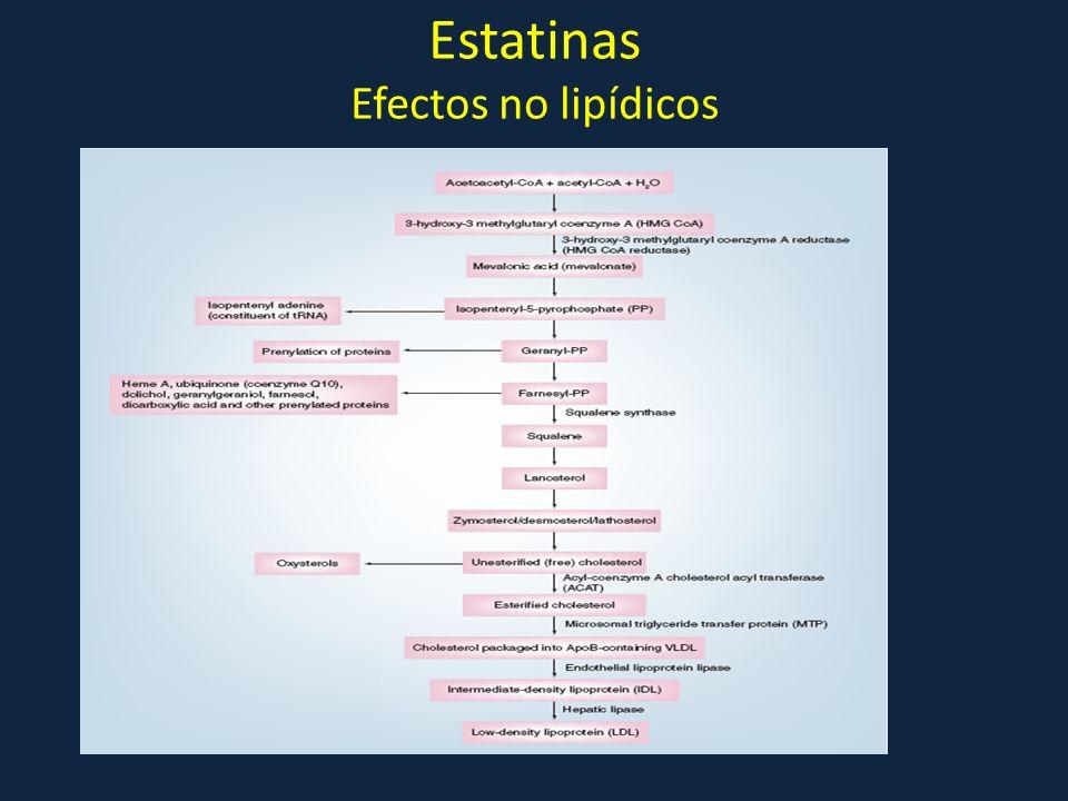 Estatinas Efectos no lipídicos