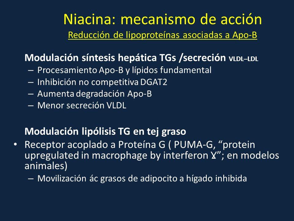 Niacina: mecanismo de acción Reducción de lipoproteínas asociadas a Apo-B Modulación síntesis hepática TGs /secreción VLDL–LDL – Procesamiento Apo-B y