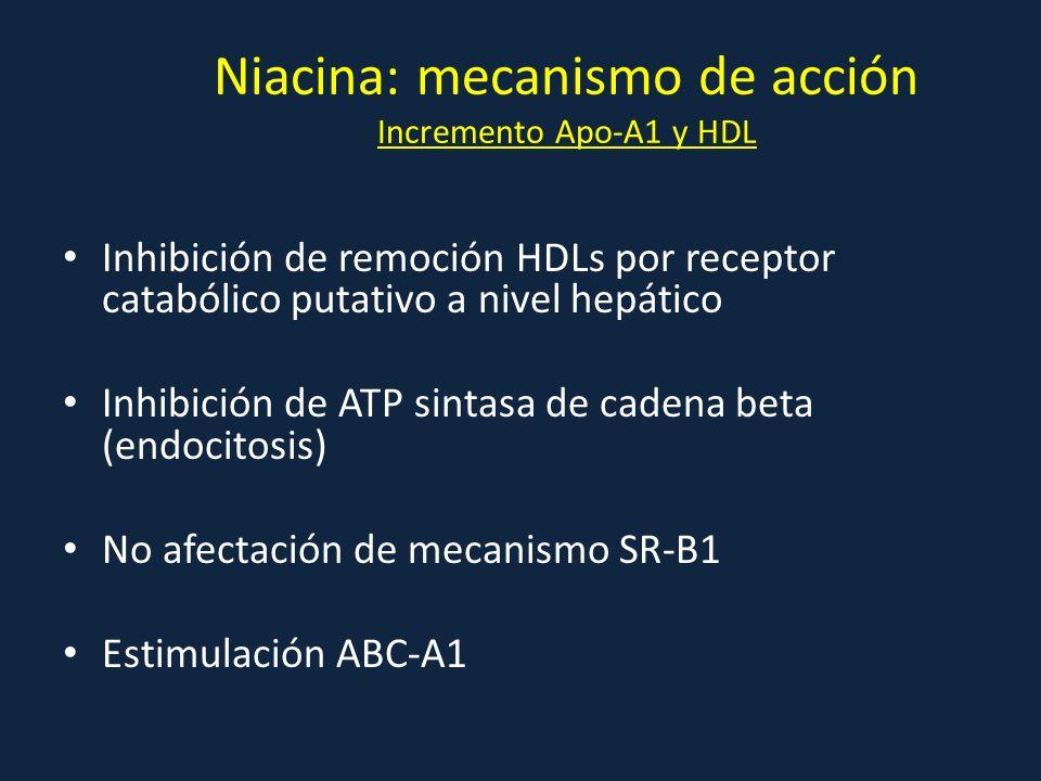 Inhibición de remoción HDLs por receptor catabólico putativo a nivel hepático Inhibición de ATP sintasa de cadena beta (endocitosis) No afectación de