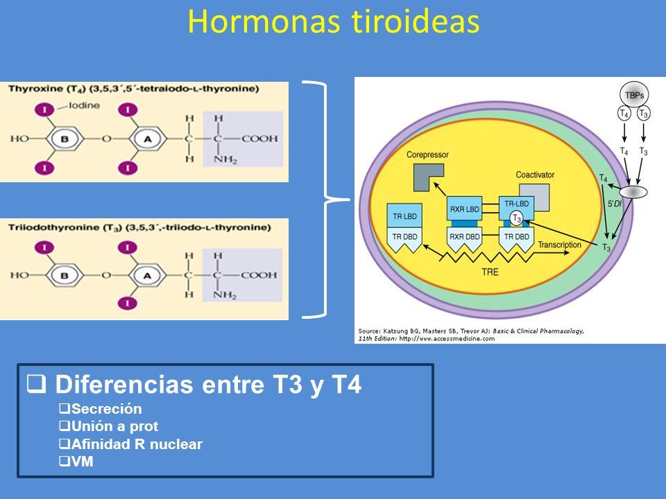 Hormonas tiroideas Diferencias entre T3 y T4 Secreción Unión a prot Afinidad R nuclear VM