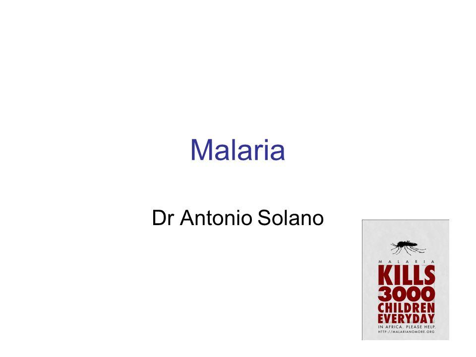 Paroxismo malárico Paroxismos duran de 6 a 12 horas 1.Pródromos (Horas) 2.Escalofríos (15 min a horas) 3.Fiebre (hasta 40 °C - horas) 4.Sudoración profusa (min)