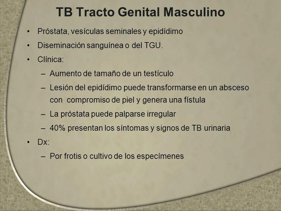 TB Tracto Genital Masculino Próstata, vesículas seminales y epidídimo Diseminación sanguínea o del TGU. Clínica: –Aumento de tamaño de un testículo –L