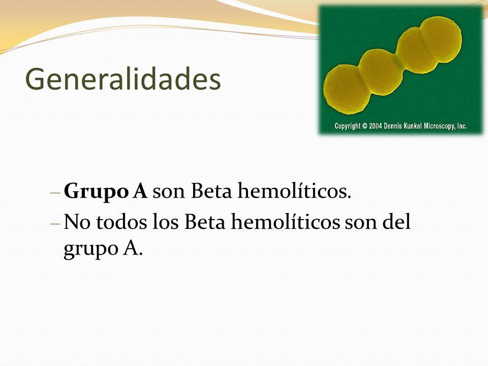 Generalidades – Grupo A son Beta hemolíticos. – No todos los Beta hemolíticos son del grupo A.