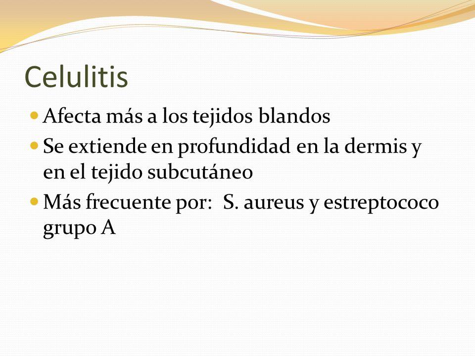 Celulitis Afecta más a los tejidos blandos Se extiende en profundidad en la dermis y en el tejido subcutáneo Más frecuente por: S. aureus y estreptoco