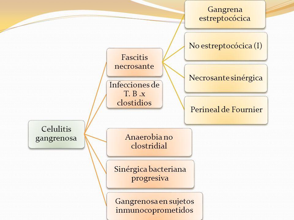 Fascitis necrosante Gangrena estreptocócica No estreptocócica (I)Necrosante sinérgicaPerineal de Fournier Infecciones de T. B.x clostidios Anaerobia n