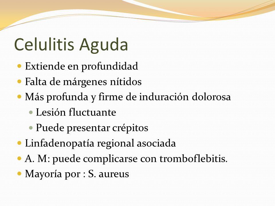 Celulitis Aguda Extiende en profundidad Falta de márgenes nítidos Más profunda y firme de induración dolorosa Lesión fluctuante Puede presentar crépit