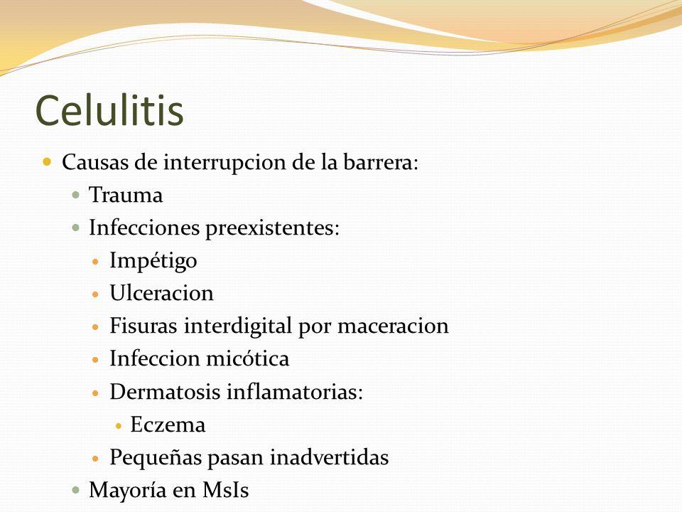 Celulitis Causas de interrupcion de la barrera: Trauma Infecciones preexistentes: Impétigo Ulceracion Fisuras interdigital por maceracion Infeccion mi