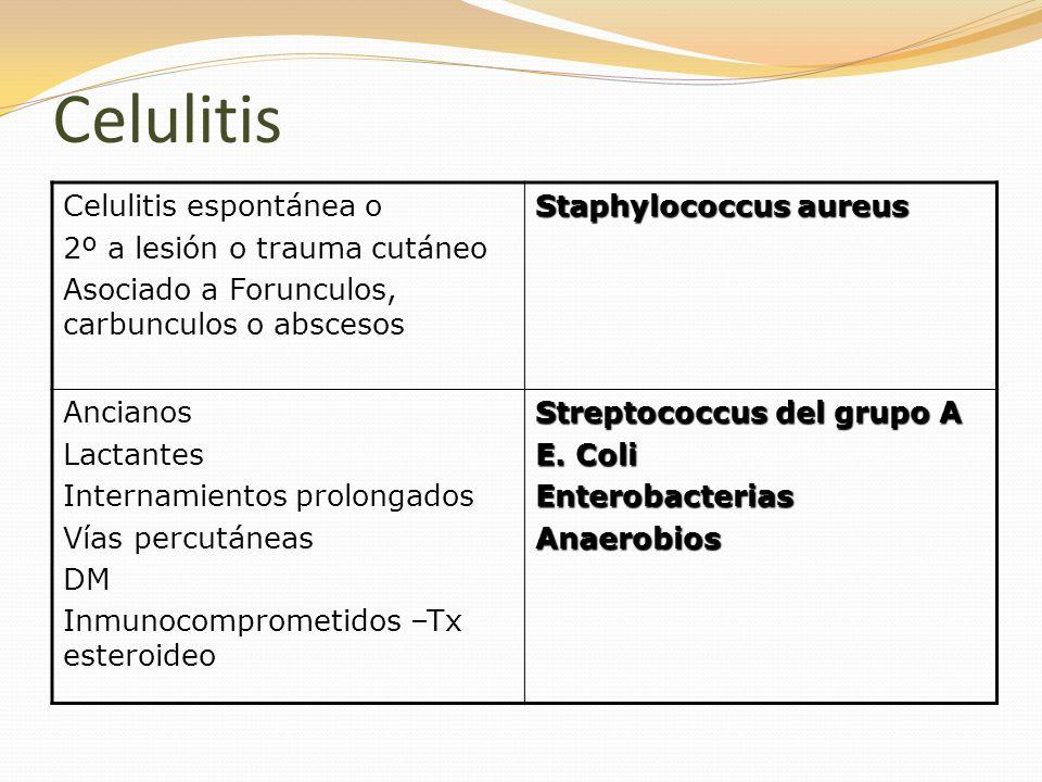 Celulitis Celulitis espontánea o 2º a lesión o trauma cutáneo Asociado a Forunculos, carbunculos o abscesos Staphylococcus aureus Ancianos Lactantes I