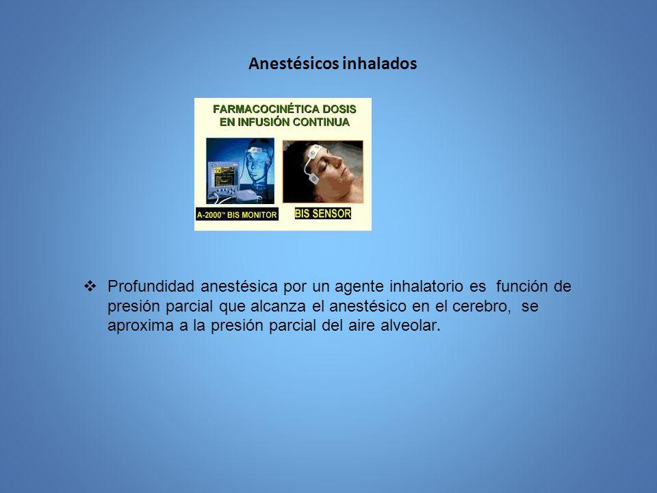 Anestésicos inhalados Profundidad anestésica por un agente inhalatorio es función de presión parcial que alcanza el anestésico en el cerebro, se aprox