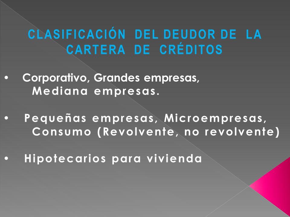 CLASIFICACIÓN DEL DEUDOR DE LA CARTERA DE CRÉDITOS Corporativo, Grandes empresas, Mediana empresas. Pequeñas empresas, Microempresas, Consumo (Revolve