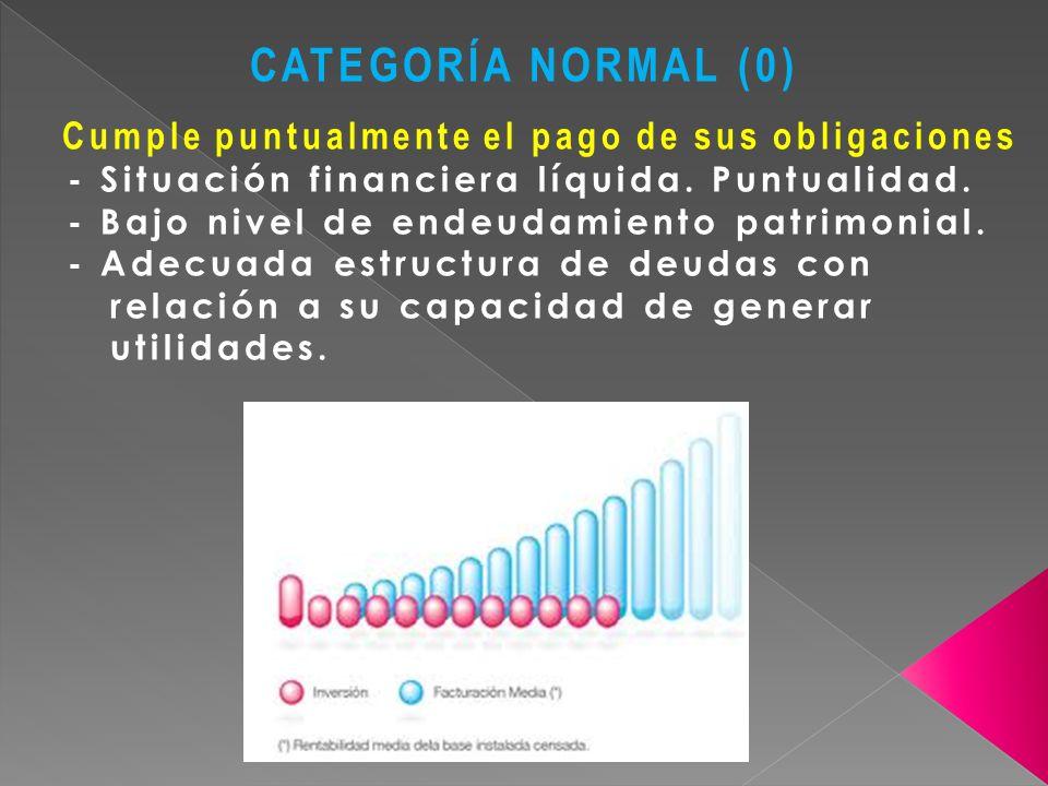 CATEGORÍA NORMAL (0) Cumple puntualmente el pago de sus obligaciones - Situación financiera líquida. Puntualidad. - Bajo nivel de endeudamiento patrim